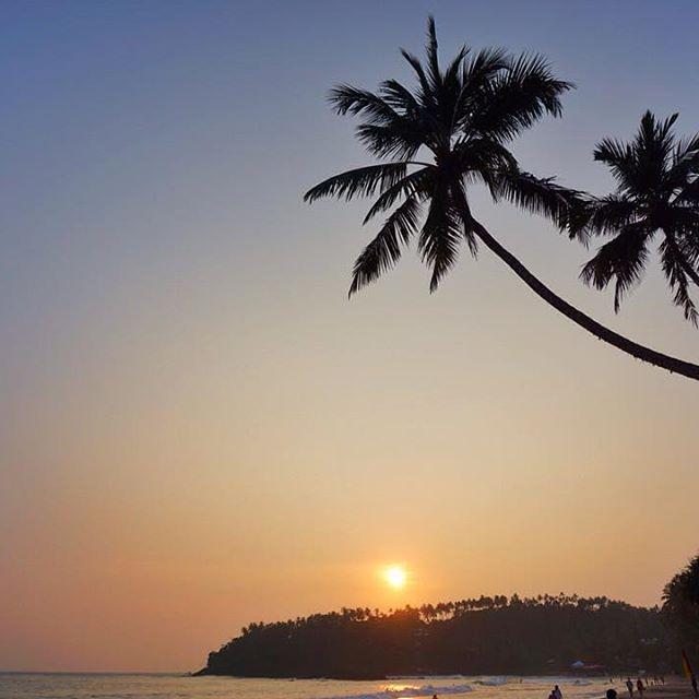 Tam 5 gece kaldığım Mirissa Beach / Sri Lanka