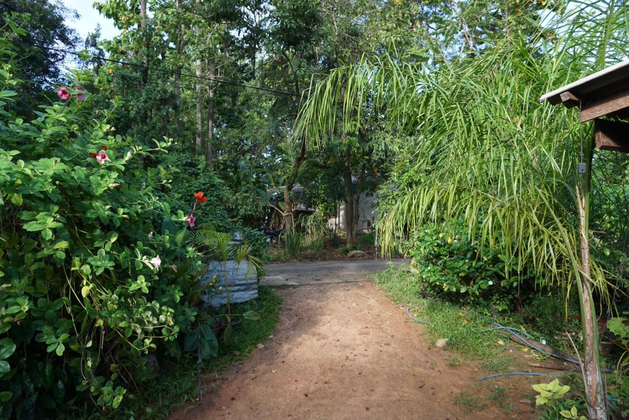Sigiriya köyünde kaldığım aile evinin girişi..